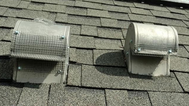 Exclusion materials on attic vents